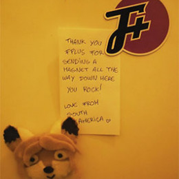 f plus magnet on the fridge with a fox