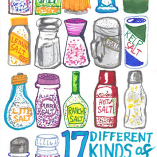 17 different kinds of salt ~ art by Adam Bozarth